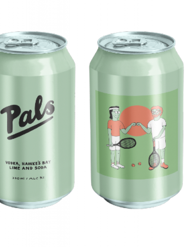 Pals Vodka Lime Soda 10 Pack Can 330ml