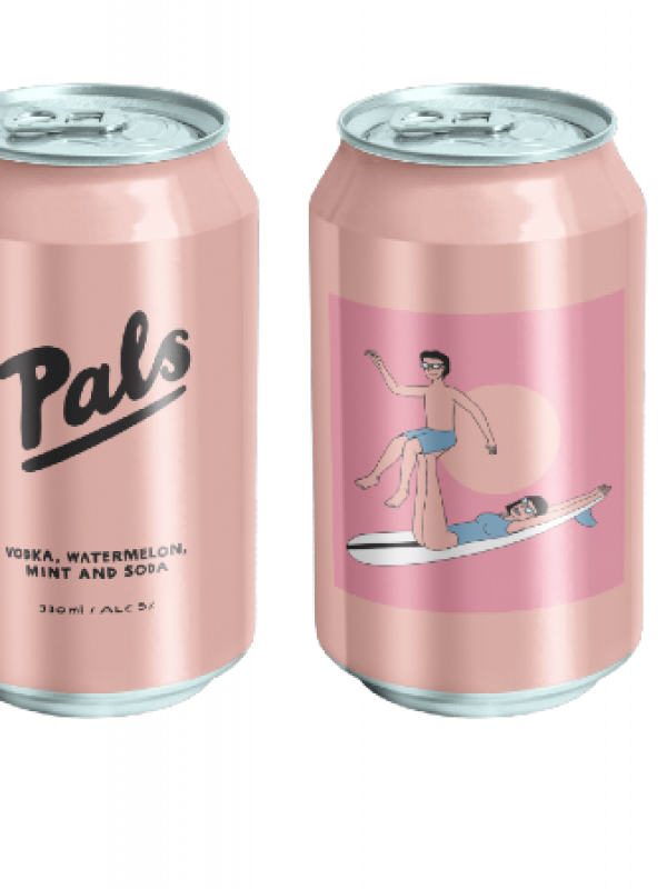 Pals Watermelon Vodka Mint Soda 10 Pack Can 330ml